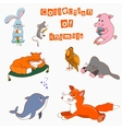 The collection of animals cartoo vector image