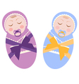 two sleeping baby vector image