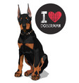 i love doberman vector image