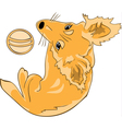Pretty red haired dog with a ball color version vector image