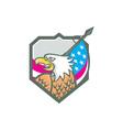 American Bald Eagle Flag Spear Retro vector image
