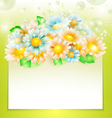 Spring flowers with paper banner vector image vector image