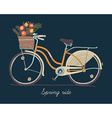 Retro Bicycle for Springtime vector image