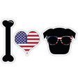 I love pugs with American symbols with black shape vector image