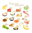 Food Rich In Proteins Poster vector image