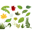 set of different leafs vector image