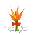bunch of carrots bound with parsley green spinach vector image