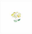 Beautiful flower on the white vector image
