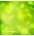 Abstract background in green color vector image vector image