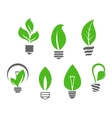 Light bulbs with green leaves vector image vector image