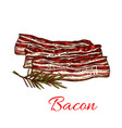 icon of fresh bacon meat for butchery vector image