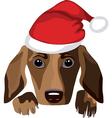 dog wearing a santa claus hat vector image vector image