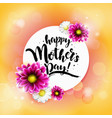 happy mothrs day banner vector image