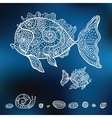 hand drawn fishes vector image