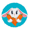 long haired rabbit holding carrot in two paws vector image