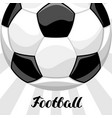soccer or football background with ball sports vector image