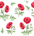 Pattern of poppy flowers vector image