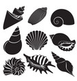 sea shells seashell silhouettes set vector image