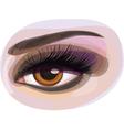 womans eye vector image