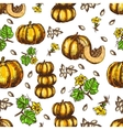 hand drawn seamless pattern sketch pumpkin vector image