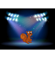 A squirrel at the stage with spotlights vector image