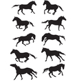 Set of horses silouettes vector image
