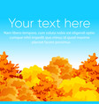 bright and colorful autumn vector image vector image