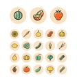 icons thin red food vegetables vector image