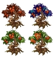 Magical trees with unusual fruits and flowers vector image