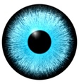 Blue eye vector image