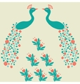 Decorative beautiful abstract peacock luxury vector image