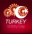 30 august zafer bayrami victory day turkey vector image