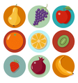 Set of Different Fruits Fruits Icons vector image