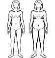 set of female body types vector image