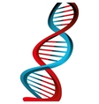 Molecular structure of DNA vector image