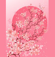 beautiful spring cherry blossom background vector image