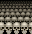 Rows of skulls vector image vector image