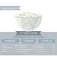 healthy collection dairy profucts vector image