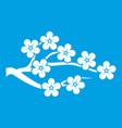 sakura icon white vector image