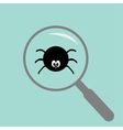 Spider insect under magnifier zoom lense Flat vector image
