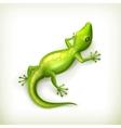 Reptile vector image vector image