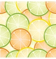 Seamless citrus background vector image vector image