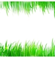 Background frame with realistic herbs vector image