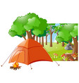 forest scene with tent and campfire vector image