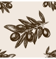 Olive branch sketch seamless pattern vector image