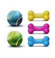 pet toys vector image