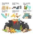 Garbage sorting food waste glass metal and paper vector image
