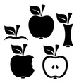 Apple design elements vector image