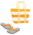 Beach bag and sandals vector image