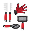 pets hair equipment vector image